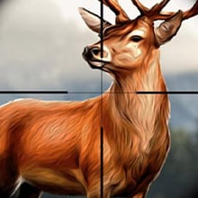 Hunting Games  picture