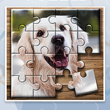 Jigsaw Puzzlepicture